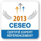 Certifié Expert SEO depuis 2013